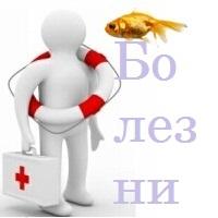 Болезни в аквариуме